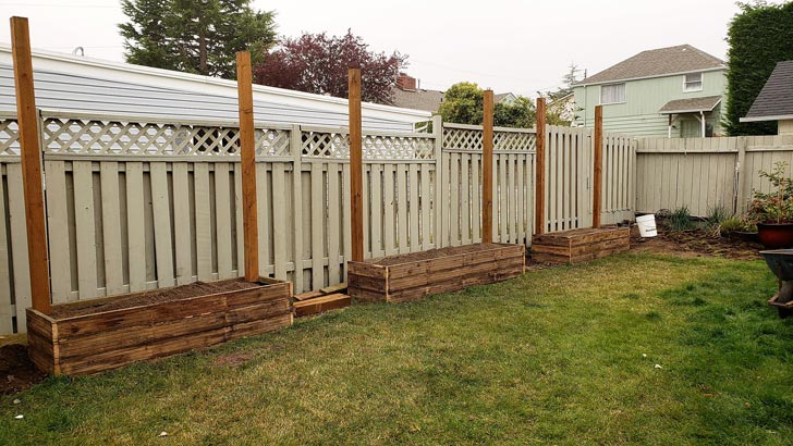 Building raised garden beds with privacy wall.