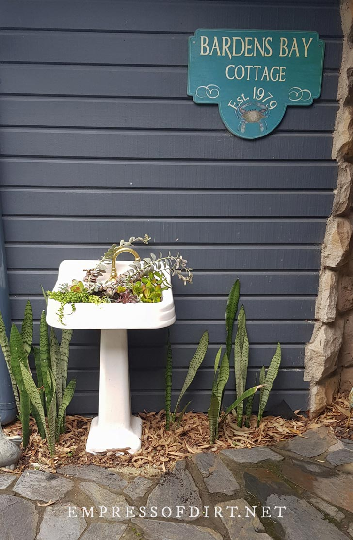 White pedestal sink planted with succulents in garden.