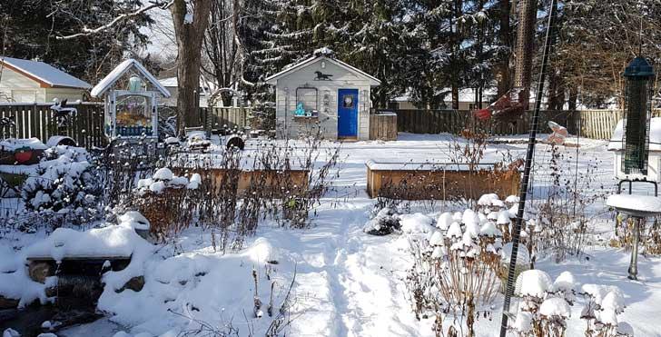 Backyard garden in winter with snow.
