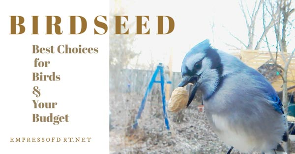 Birdseed Guide