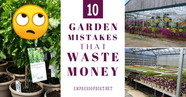 Garden mistakes that waste money.