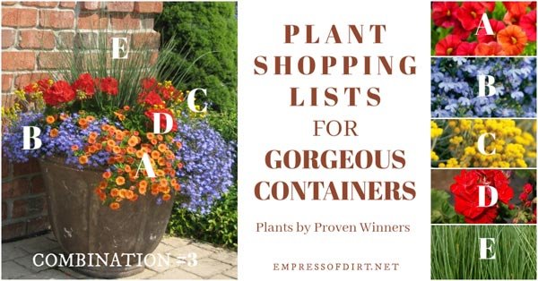 Plant list for eye-popping colours.