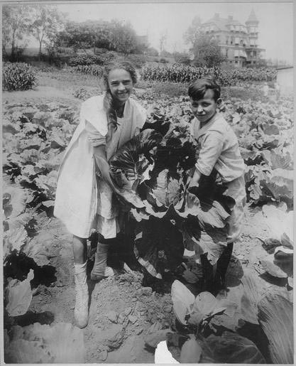 Boy and girl holding massive cabbage plant in garden.