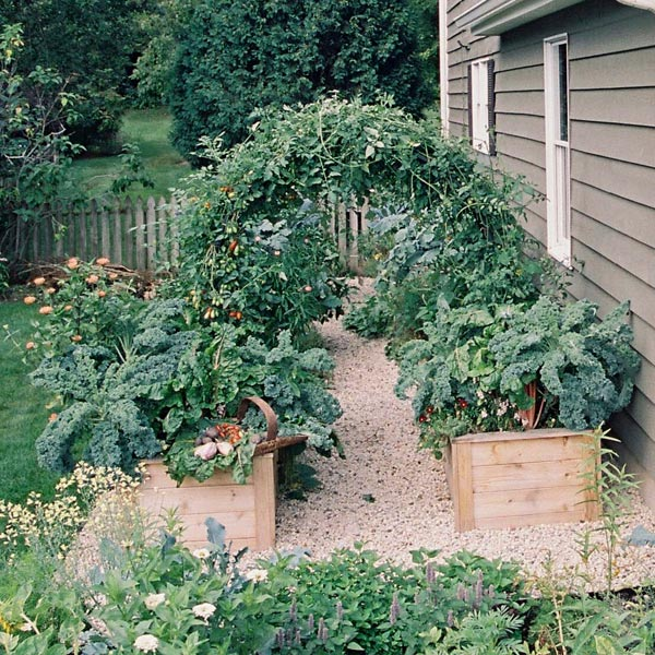 Raised kitchen garden beds by house. Photo by Eric Kelley.