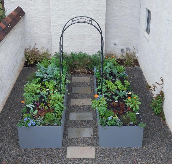 Blue raised beds for kitchen garden. Photo by Eric Kelley.