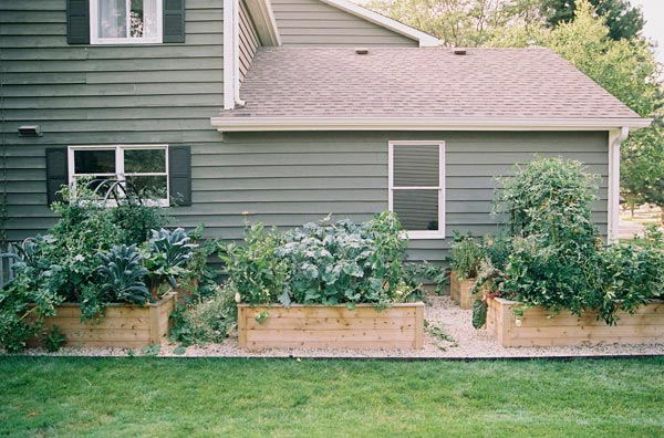 Wood raised garden beds for kitchen garden. Photo by Eric Kelley.