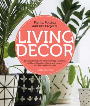 Living Decor book