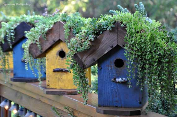 DIY Living Roof Birdhouse - RebeccasBirdGardens Etsy Shop
