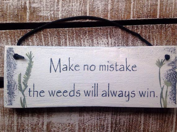 Make no mistake: the weeds always win by InspirationToArt on Etsy