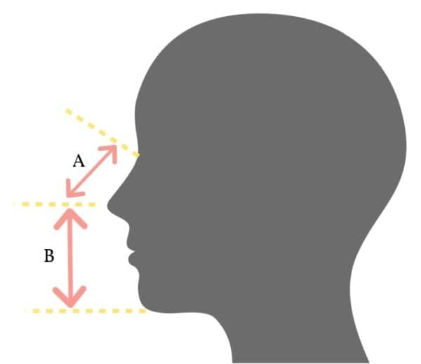 Diagram showing two key measures for making a face mask.