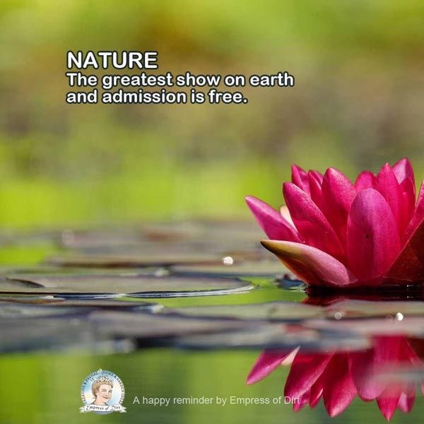 Nature is the greatest show on earth and admission is free.