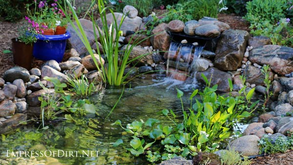 Garden pond with waterfall.