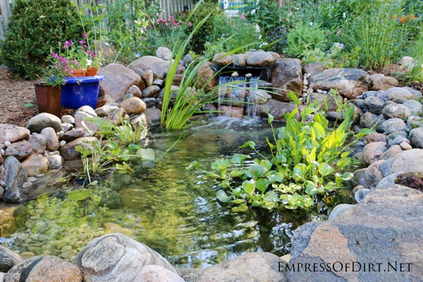 Waterfall Flowing Into Newly Built Backyard Garden Pond.