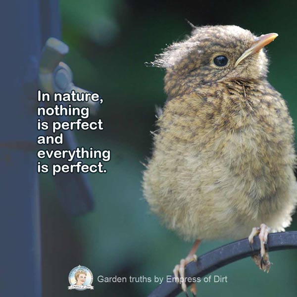 In nature, nothing is perfect and everything is perfect.
