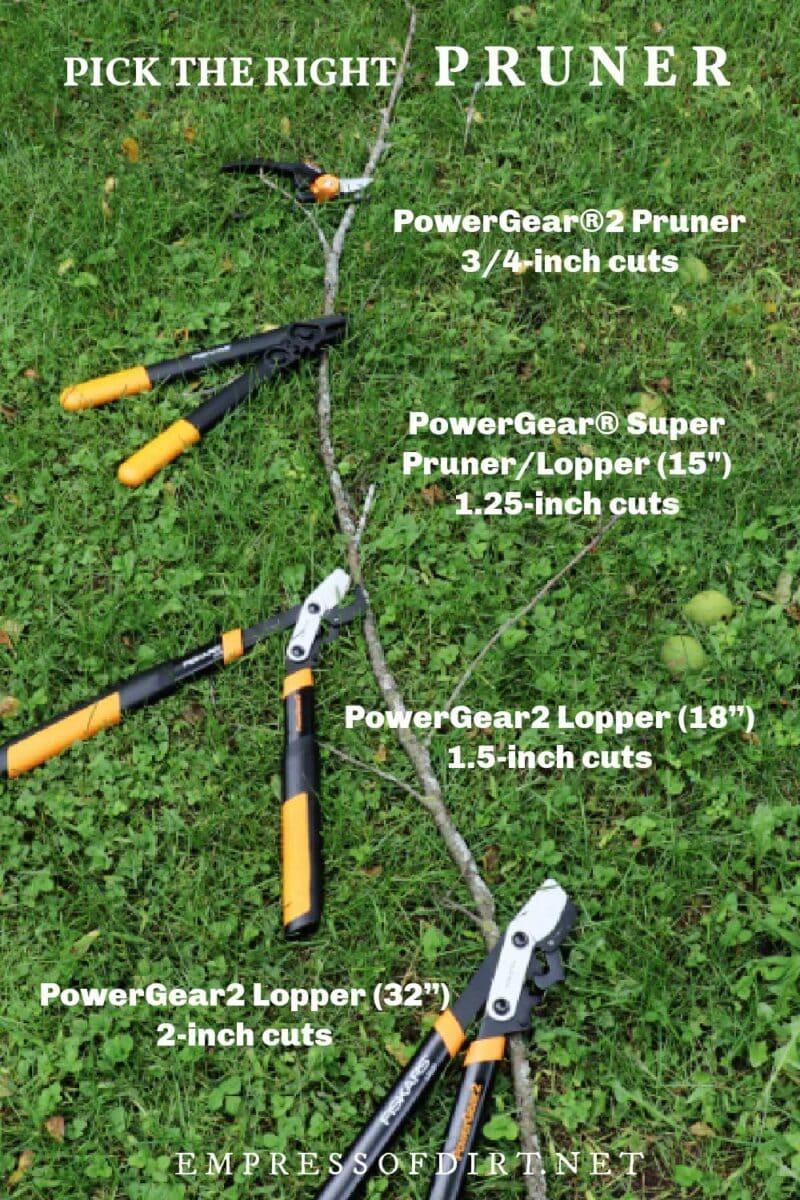 Various pruning tools.