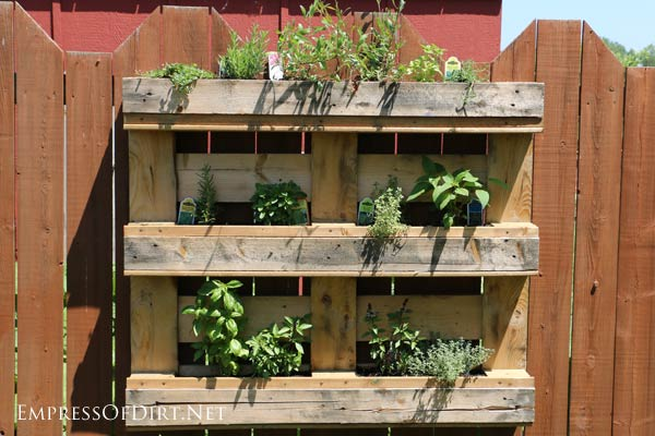 Turn a pallet into a wall-mounted planter for herbs