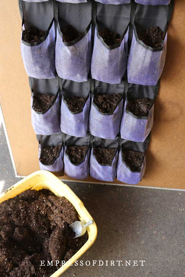 Adding potting mix to shoe bag organizer.