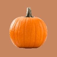 Orange pumpkin.