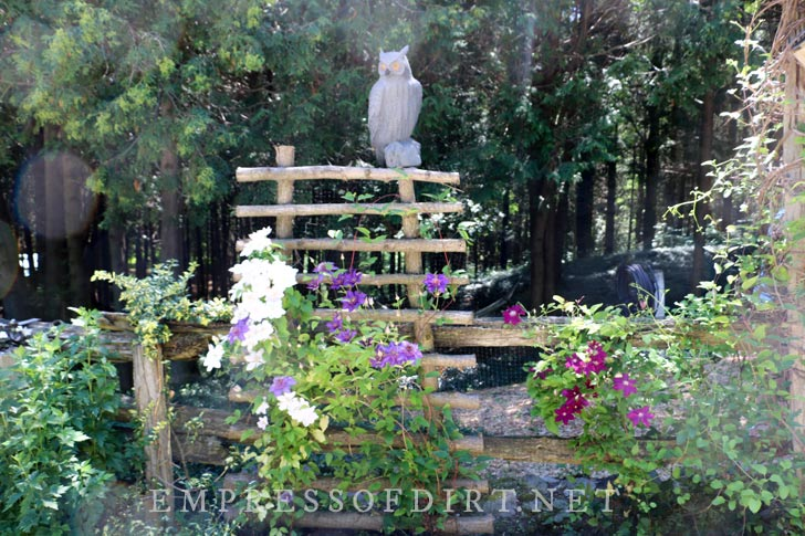 Garden trellis made from rough branches with fake owl on top.