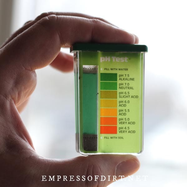Testing soil pH with a home testing kit.