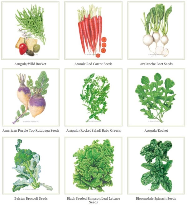 Assortment of frost-tolerant vegetable seed packets from Botanical Interests.