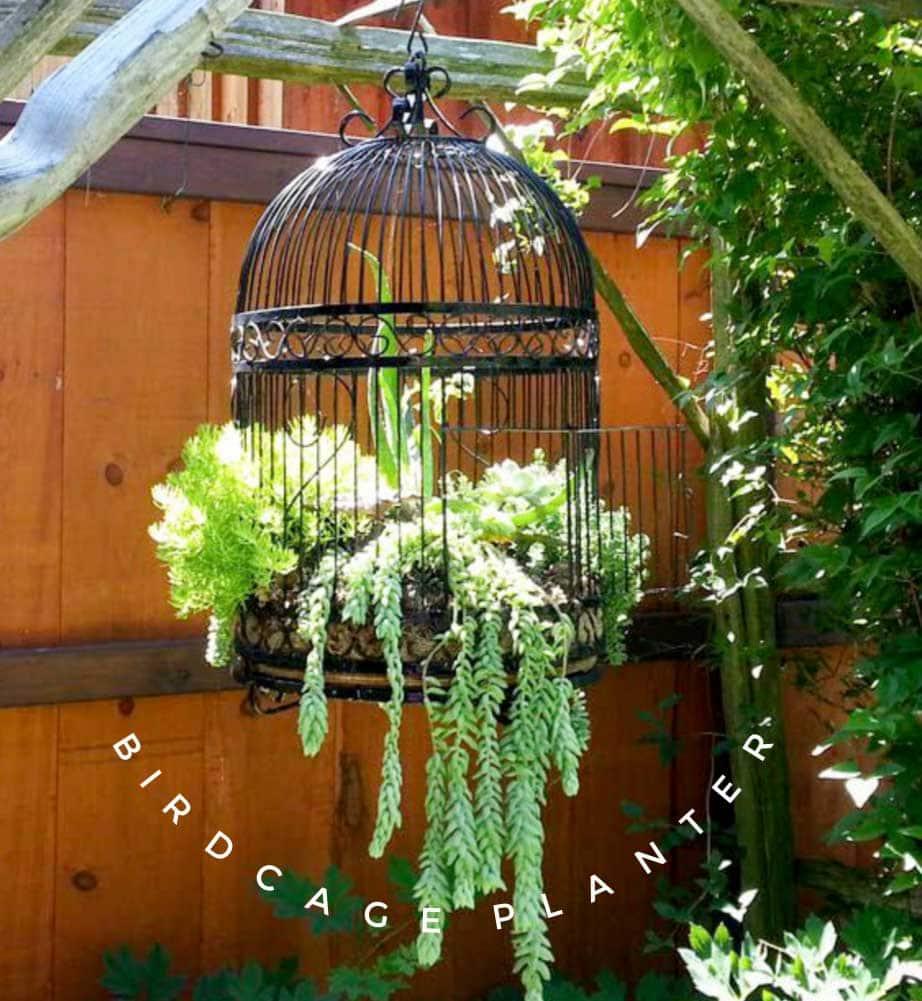 How To Make A Birdcage Flower Planter Empress Of Dirt