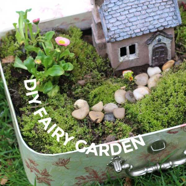 Fairy garden in a suitcase.