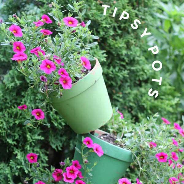 Green tipsy pot planter.