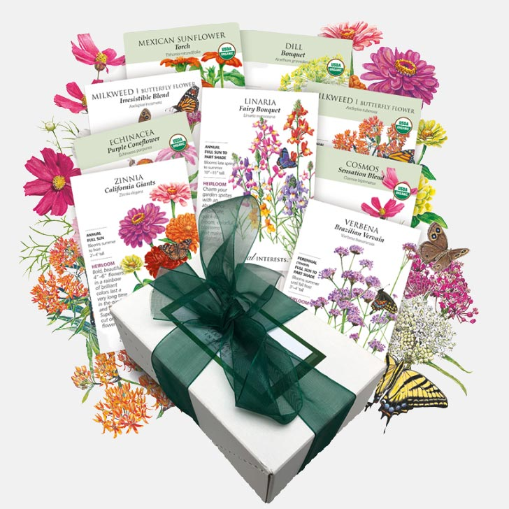 A collection of butterfly garden seeds available from Botanical Interests.