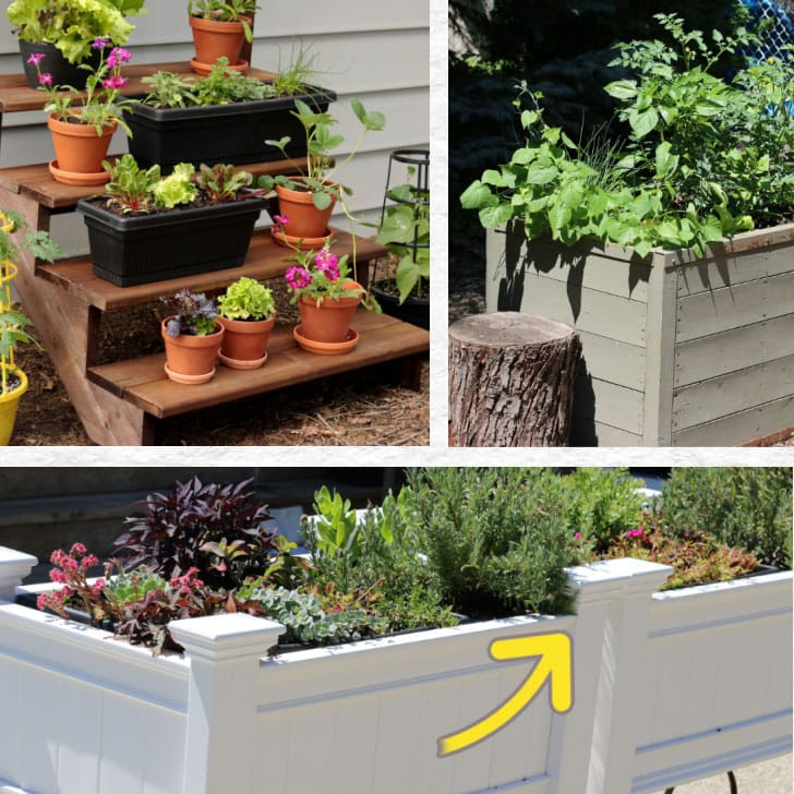 Examples of back and knee-friendly garden solutions including tall raised beds.