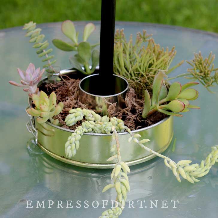 Bundt pan made into a patio table planter.