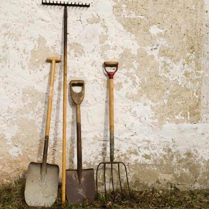 Garden tools including shovels resting against an old shed wall.