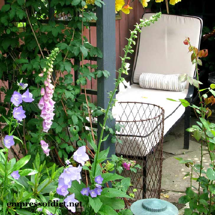Lounge chair in a flower-filled garden nook.