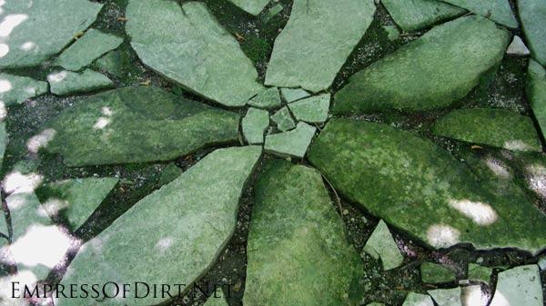 Flagstone flower